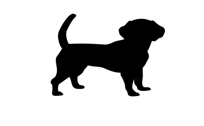 Modo di dire del giorno: Hunde, die…