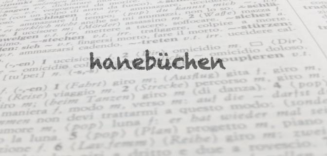 "Parola del giorno: ""hanebüchen"""